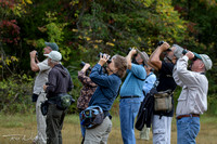 ASK group birding trips